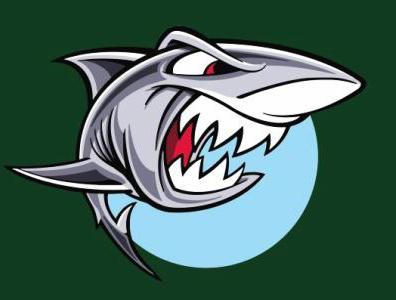 大鲨鱼大乐透