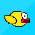 不该死的小黄鸟