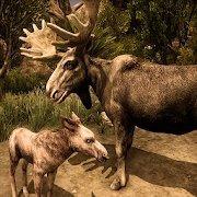 终极驼鹿模拟器游戏
