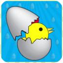 快乐小鸡生鸡蛋