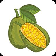 菠萝蜜∏赚钱