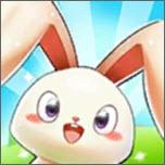 我的安迪兔