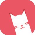 貓咪短視頻