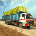 甘蔗卡車進化
