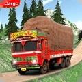 印度貨運卡車司機