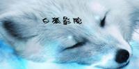 白狐影院3773版本大全