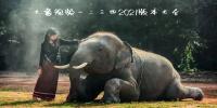 大象视频一二三四2021版本大全