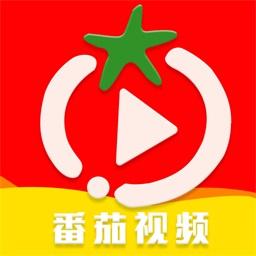 番茄视频官网版app