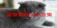 藍貓影視app合集