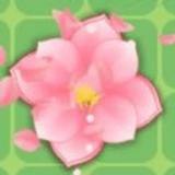 拼花朵红包版
