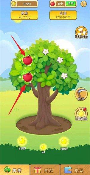 蘋果多多2