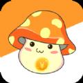 生钱蘑菇app手机版
