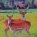 鹿家庭模拟器