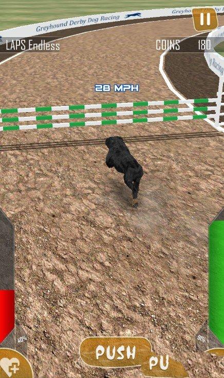 狗狗赛跑3D